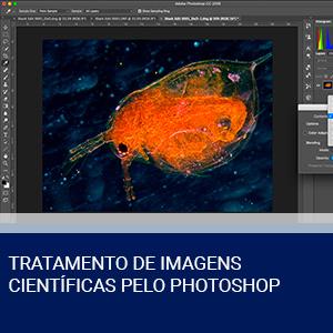 TRATAMENTO DE IMAGENS CIENTÍFICAS PELO PHOTOSHOP