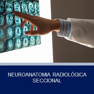 NEUROANATOMIA RADIOLÓGICA SECCIONAL